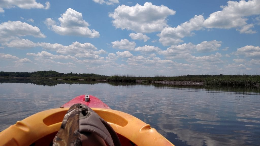 Kayaking in Liberty County