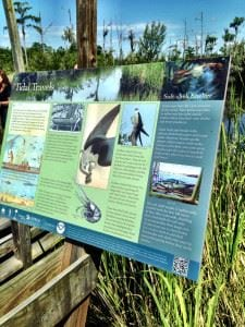 Wildlife information panel at Cay Creek