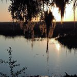 Peaceful Places and Scenic Drives to Soothe Your Soul in Liberty County