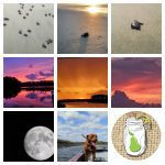 Ride Out the Summer Sun With Our Top 9 from August