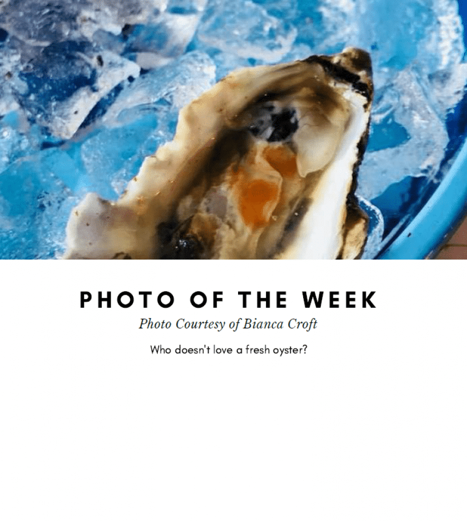 photo of the week - PC of Bianca Croft