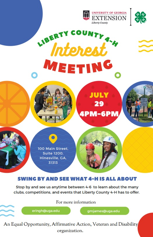 Flyer for Interest Meeting
